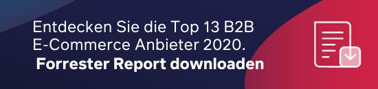 Top 13 B2B E-Commerce Anbieter
