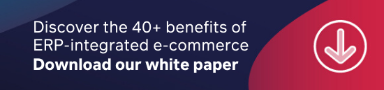 Discover the 40 benefits of ERP-integrated e-commerce in our white paper