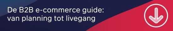 b2b-e-commerce-guide-mini-cta
