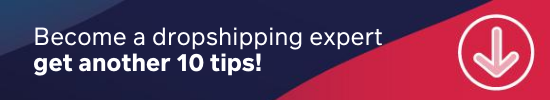 guide to dropshipping - 10 tips