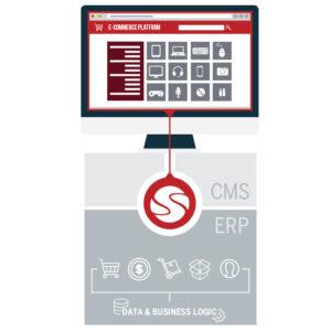 The Benefits of ERP E-Commerce Integration for B2B