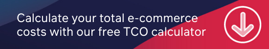 What to calculate your e-commerce TCO?